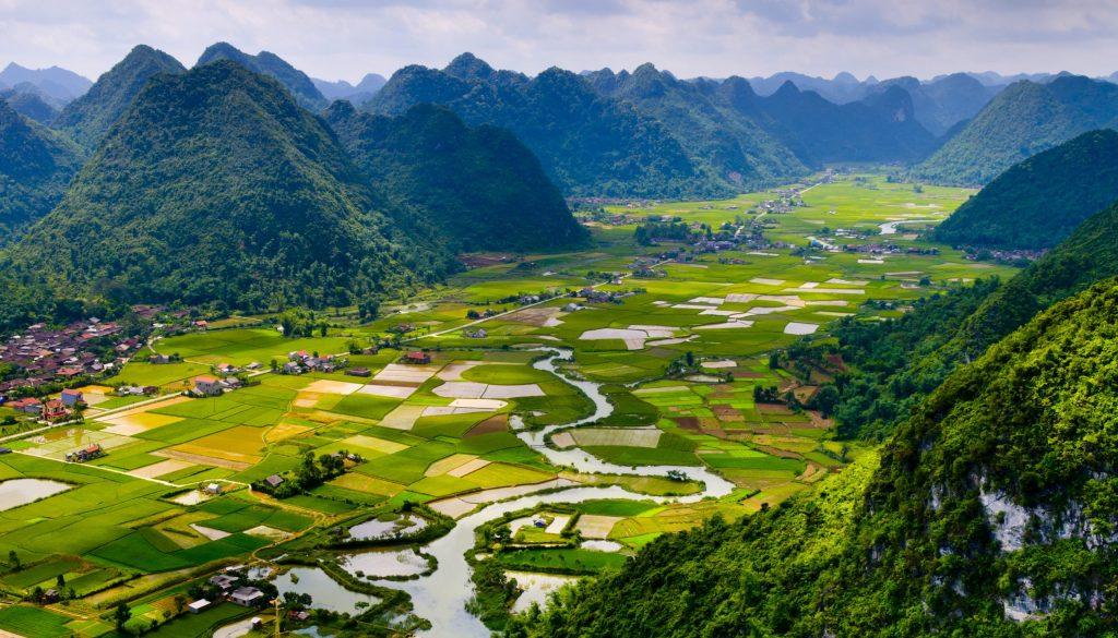 shutterstock_145660013Rice field in valley in Vietnam
