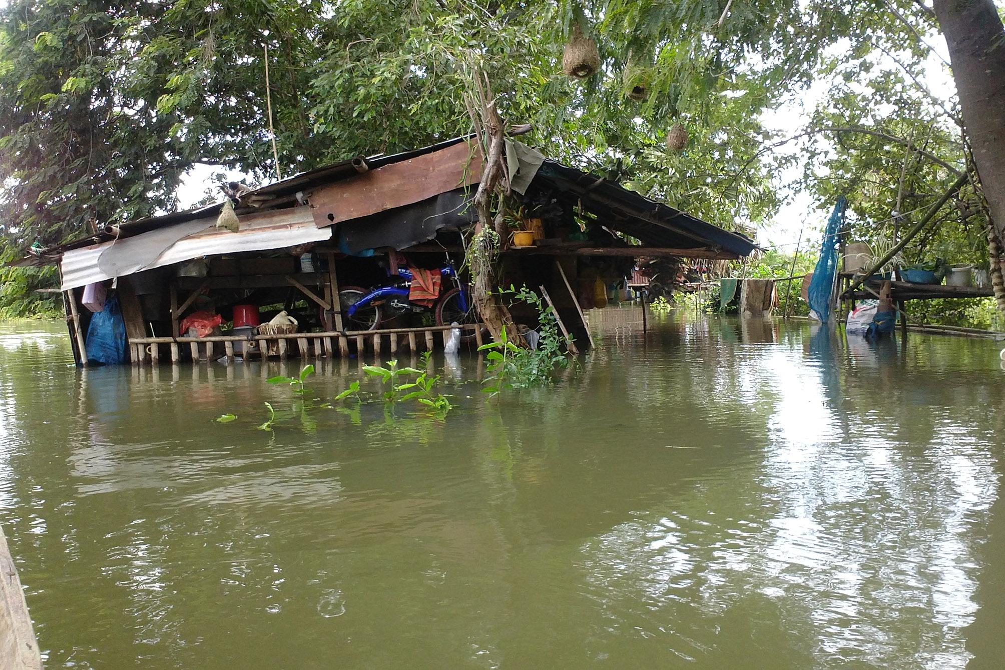 TLC Flood Appeal 2