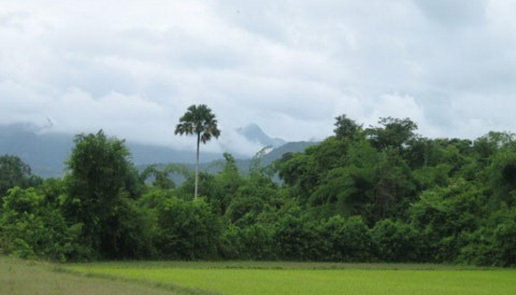 (Pa Tad Khe)_Luang Prabang - Botanical Garden 4