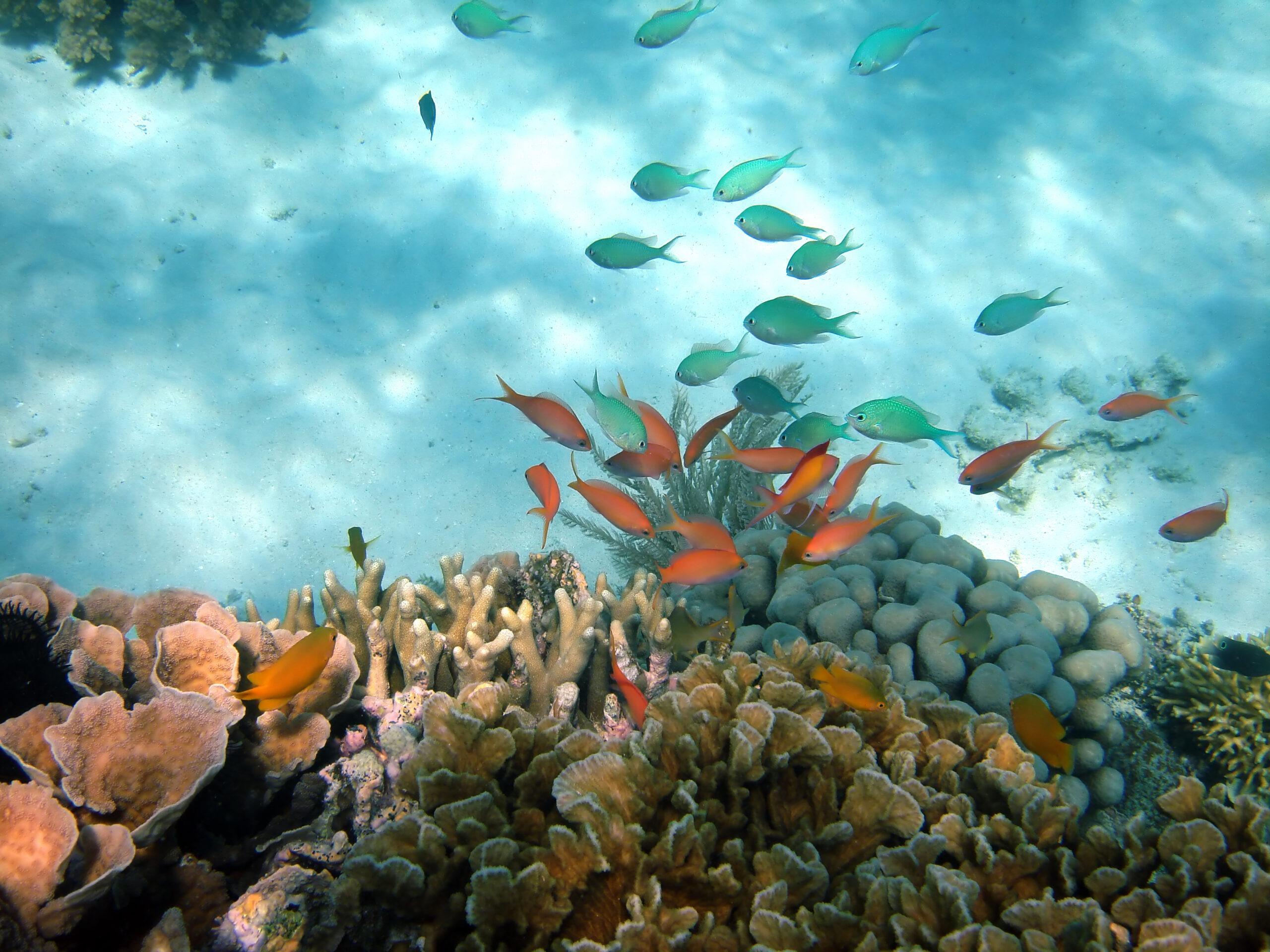Indonesia-Bali-Lombok-Island-Shutterstock_23620159
